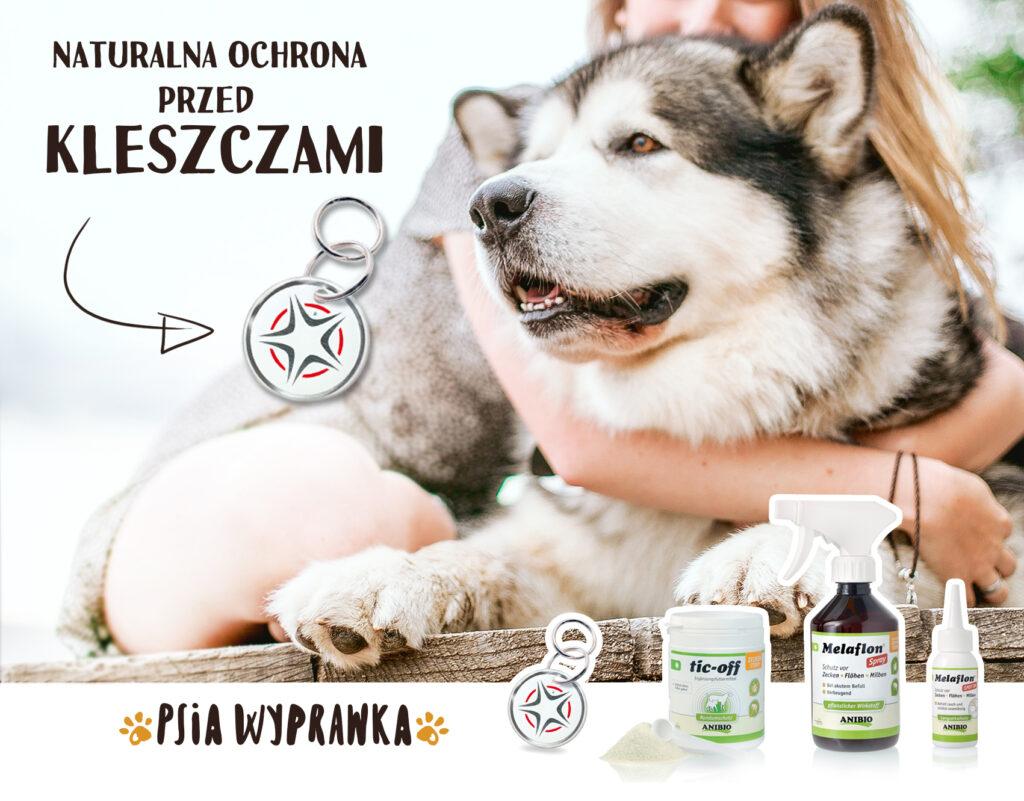 Naturalna ochrona na kleszcze dla psów