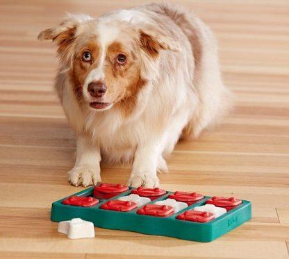Nina Ottosson Dog Brick - interaktywna zabawka dla psa